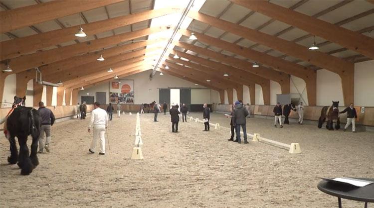 Vanwege de geldende coronamaatregelen werd de keuring dit keer georganiseerd in Ermelo.