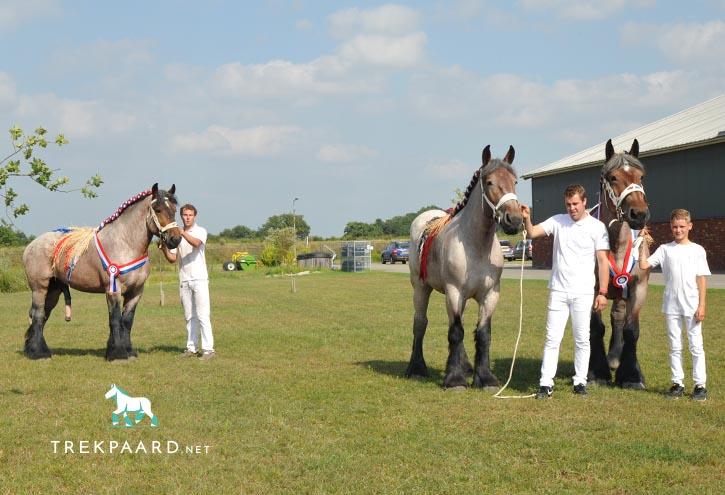 Het succes van de familie Van Rossum bijeen met kampioenen Hero, Lotte en Orfa van de Maaskanthoeve.